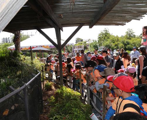OCG students at LA Zoo